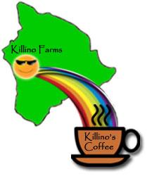 KillinoBigIslandToCup